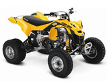 BRP Can-Am DS 450