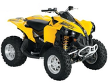 BRP Can-Am Renegade 800